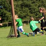 Celebrating a goal kicked in soccer