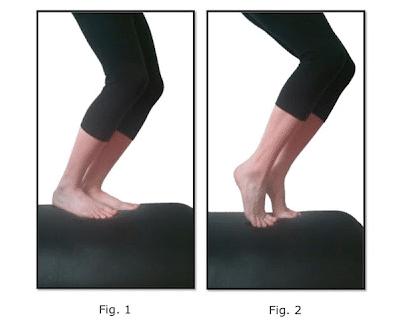 Bent lef double leg calf raise exercise demonstration