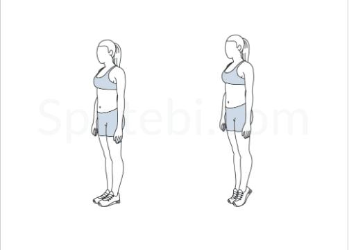 diagram of calf strengthening exercises